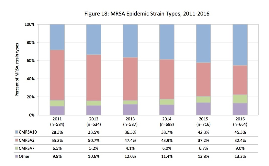 mrsa strains copy